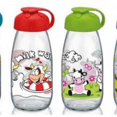 Sticla pentru copii cu décor 250cc MN015436 Raki