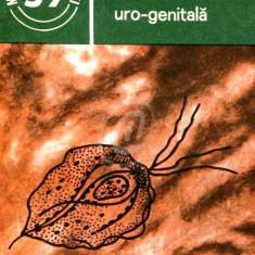 Trichomonaza uro-genitala