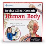 Cumpara ieftin Corpul uman - set magnetic