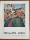 Alexandru Ziffer- Stefan Borghida