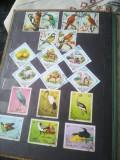 Ocazie, Clasor cu timbre de colecție
