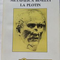 (C457) ADRIANA NEACSU - METAFIZICA BINELUI LA PLOTIN