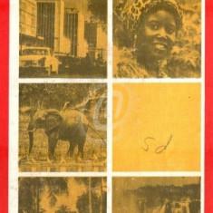 Republica Zambia (Ed. Stiintifica si enciclopedica)