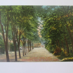 Carte postala Bazargic/Dobrici-Cadrilater/Dobrogea de Sud,circulata 1926