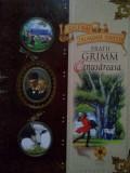 Fratii Grimm - Cenușăreasa, Alta editura