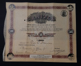 Actiune 1913 Samitca , Craiova , Institut de arte grafice , actiuni , titlu