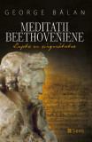 Meditatii beethoveniene - Lupta cu singuratatea - George Balan Ed. Sens 2020, Alta editura