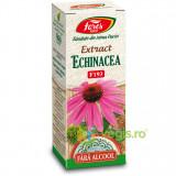 Extract Echinacea fara Alcool (F193) 50ml