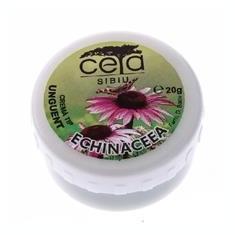 Unguent Echinaceea Ceta 20gr Cod: ceta00007