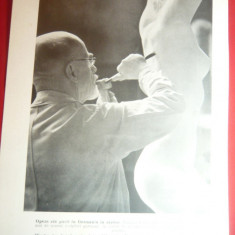 Fotografie ww2 tiparita -Sculptorul Fr Klimsch ,dim.18x24 cm - propaganda german