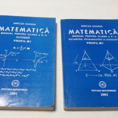 MIRCEA GANGA MATEMATICA MANUAL PENTRU CLASA A X A M1-- 2001     RM4