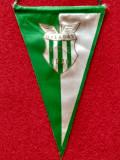 Fanion fotbal - Szombathelyi Haladás (Ungaria)