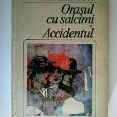 Mihail Sebastian – Orasul cu salcami * Accidentul