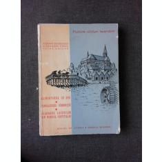 PROBLEME EDILITARE BUCURESTENE CANALIZAREA DAMBOVITEI , FLORIAN GEORGESCU