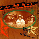 ZZ Top One Foot In The Blues Best Of (cd)