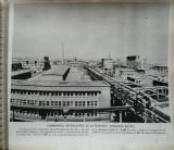 Fotografie Combinatul Petrochimic de la Borzești, Regiunea Bacău
