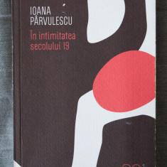 Ioana Pârvulescu - În intimitatea secolului 19 (Humanitas, 2010)