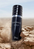 Dior Sauvage Very Cool Spray EDT 100ml pentru Bărbați