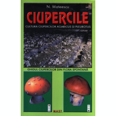 Cultura ciupercilor