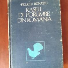 RASELE DE PORUMBEI DIN ROMÂNIA de FELICIU BONATIU