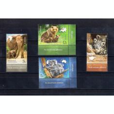 ROMANIA 2019 - PUI DE ANIMALE SALBATICE - LP 2228