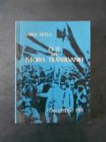 VASILE NETEA - O ZI DIN ISTORIA TRANSILVANIEI, 1 DECEMBRIE 1918