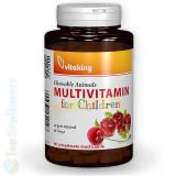 Cumpara ieftin Multivitamine Copii 4-6 ani 90tab. masticabile, gust cirese Vitaking