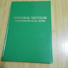 PROF. F. RUTTNER--CRESTEREA MATCILOR - APICULTURA - 1980 - EDITIE LUX