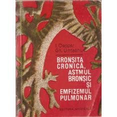 Bronsita Cronica, Astmul Bronsic Si Emfizemul Pulmonar - I. Clepper