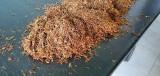 Tutun firicel aroma Pall Mall  calitate premium 1 kg-135 lei-transport gratis