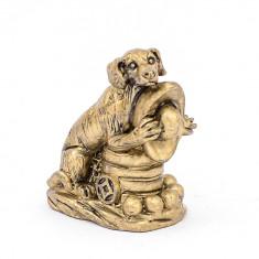 Caine auriu pe monede si pepite - mediu
