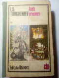 Apele primaverii, I. S. Turgheniev, 700 pag