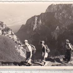 bnk foto - Bucegi - Spre Cruce - 1957