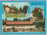 CPIB 15210 - CARTE POSTALA - BORSEC, MOZAIC