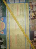 Cumpara ieftin AFIS VECHI - CALENDAR MARE -1988 - PRETURILE CU CARE ERA COLECTAT LAPTELE ...