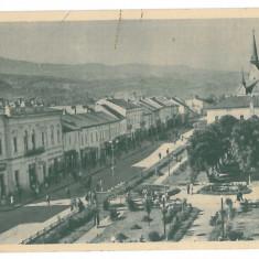 3858 - SIGHET, Maramures, Romania - old postcard - used - 1958, Circulata, Printata