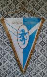Fanion Brescia Calcio