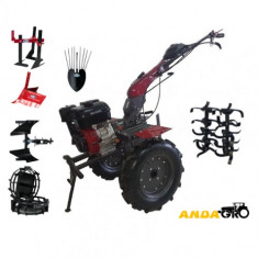 Motocultor WM 1100D+Roti Metalice+Plug Reversibil+Rarita+Prasitoare+Plug Cartofi