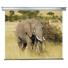Ecran de proiectie montabil pe perete sopar platinum 200 x