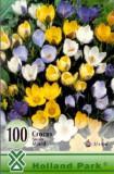 Crocus Botanical mixed ( 100 bulbi )