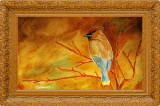 Acuarela aripi de ceara ( tablouri tablou picturi pictura grafica )