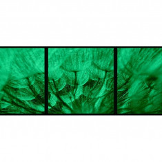 Set tablou fosforescent Papadie