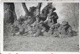 Fotografie vanatori munte romani Fagaras 1943 al doilea razboi mondial