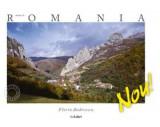 Made in Romania (spaniola)   Florin Andreescu, Mariana Pascaru, Ad Libri