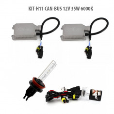 H11 CAN-BUS 12V 35W 6000K Best CarHome, Carguard