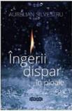 Ingerii dispar in ploaie | Aurelian Silvestru