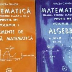 Matematica manual pentru clasa a XII-a 1, 2. Elemente de analiza matematica, Algebra-Mircea Ganga