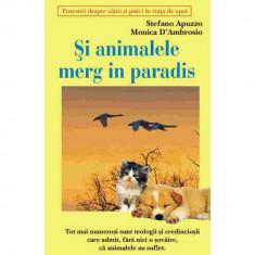 Si animalele merg in paradis - Stefano Apuzzo Monica D`Ambrosio