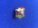 Insignă vânătoare - AGVPS Asociația Vânătorilor și Pescarilor - Rață sălbatică