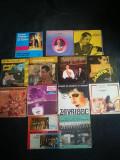 Discuri vinil muzica romaneasca,petrecere,populara,etc. Disc vinyl.